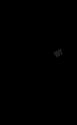 Warriors Restoration Services Logo